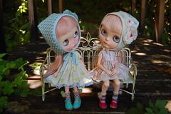 DSC_0024 (Lindy Dolldreams) Tags: blythedoll daffnerycustomdolls xanamaneca girls dolls petitbonbonbys jiajiadoll
