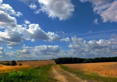Pickworth track (tina negus) Tags: pickworth track august harvest lincolnshire