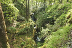 Poulanass Waterfall at Glendalough (Colin Kavanagh) Tags: waterfall wicklow cowicklow glendalough woods forest trail nature naturetrail woodland green trees hiking glen