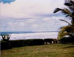 Views of Hanalei Bay - c1983 (3) (kimstrezz) Tags: 1983 familytriptohawaiic1983 hanaleibay kauai