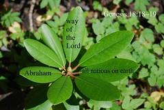 About, Adonai Yeshua HaMashiach! (Jouni Niirola) Tags: genesis abraham adonai yeshua hamashiach