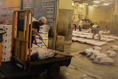 tsukiji-13 (winnieyklai) Tags: tsukiji fish fishmarket market tokyo japan seafood tuna auction tunaauction