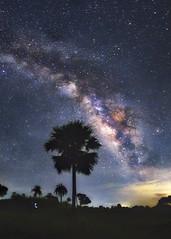Guardians Of The Galaxy 2 (PhotographyBySoumen) Tags: milkyway longexposure longexpo galaxy jessore bangladesh astrophotography astroscape astro landscape trees lowlight night nightscape nightphotography