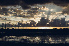 Dusk|PEN-F (里卡豆) Tags: olympus penf 夕陽 黃昏 sunset dusk voigtlander 25mm f095 nokton
