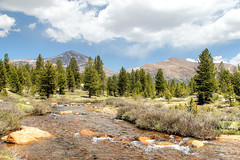 Clouds Over Tuolumne Meadows (Robert F. Carter) Tags: landscape landscapes nationalparks yosemitenationalparks tuolumnemeadows rivers clouds spring springtime ourbeautifulworld passiton crookedtreephotographicsociety robertcarterphotographycom ©robertcarter ngc
