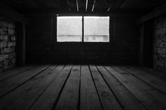 20130916Auswitch II Birkenau08 (J.A.B.1985) Tags: auswitch poland polonia iiww worldwar iigm guerramundial holocaust holocausto soah