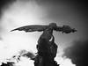 M*u*sculinity (an vanhooren) Tags: blackandwhite war warrior power yang masculinity muscles superiority