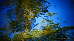 (Paige Rice) Tags: backcountrycamping camping canoeing campsite coldlake abstract abstractart kawarthahighlands beautiful landscape wilderness paddling lakes