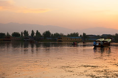 Dal Lake sunset, Srinagar (India) (Rajiv Lather) Tags: camera sunset india mountains canon landscape evening photo heaven image dusk hills photograph cashmere ripples srinagar himalayas houseboats shikara goldenlight dallake jammukashmir kashmirvalley
