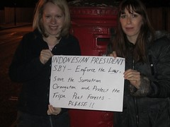 Helen Holloway, London, UK (endoftheicons) Tags: sumatra orangutan deforestation palmoil tripa internationaldayofaction