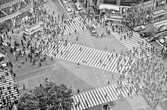 A few seconds of Shibuya Scramble Crossing Tokyo (Brendan  S) Tags: life travel people blackandwhite bw woman man men cars car japan women asia crossing cross traffic humanity time shibuya dream pedestrian pedestrians humans 2012 shibuyacrossing tokyojapan tokyp shibuyatokyo floor22 livelearnlove rebelsab shibuyaexceltokyuhotel shibuyapeople shibuyascramblecrossing brendan shibuyadream shibuyafromabove humanbeingsonthego