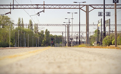 Waiting... (Vemsteroo) Tags: uk summer sun station train canon 50mm northampton waiting quiet transport perspective platform tracks warmth environmental peaceful rail symmetry wires 7d signage manmade f18 redlight delays deserted overhead goingsomewhere