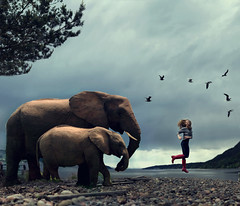 Living The Wildlife (Sophia Alexis) Tags: red sea portrait tree girl birds norway photoshop self canon hair eos 50mm jumping boots stones hill sigma 7d hunter elephants cs5