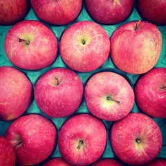 Fuji apples (DigiPub) Tags: apple japan retail closeup fruit square photography sold nopeople supermarket backgrounds yokohama fullframe onsale abundance foodanddrink freshness gettyimages healthyeating     colorimage largegroupofobjects  applefruit kanagawaprefecture directlyabove consumerproduct  instagram iphone4s  gettyimagesjapan12q3  sale201211 sale201302 sale201501