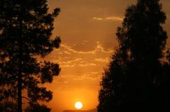 جدایی.... (MahanMD) Tags: light sunset sky orange sun nature colors clouds airport iran shiraz نور غروب آسمان canon400d دلتنگی جدایی