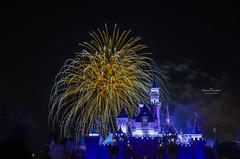 Disneyland Firework Show - 4770 (DaisyYeung) Tags: show california ca usa castle night photography nikon colorful long exposure time fireworks disneyland disney daisy anaheim nikkor yeung 1024mm d7000 daisyyeung daisyeung