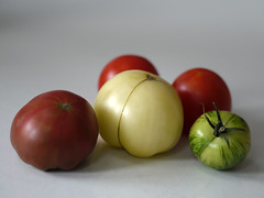 _1150022 (Old Lenses New Camera) Tags: stilllife plants garden tomatoes harvest cine panasonic telephoto g1 f25 wollensak 63mm 212inch