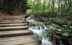 Plitvice stairs (Donovan T M) Tags: wood blur fall film water stairs contrast analog waterfall wooden nationalpark stair tripod croatia retro analogue om1 plitvice