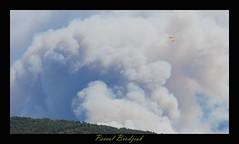 Canadairs en action (pascalb2009) Tags: fire fuego pompier feu incendie emporda foc catalogne