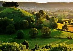 Dursley at Dusk (Mike Dorey) Tags: uk greatbritain trees light sunset shadow england sun southwest tree green english field rural woodland landscape lowlight woods nikon britain dusk farm country hill farming sigma cotswolds gloucestershire hills shade agriculture stroud hilltop brittish d90 dursley englishness