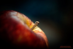 An Apple A Day....... (asifsherazi) Tags: pakistan apple nature beautiful lahore nikond700 asifsherazi