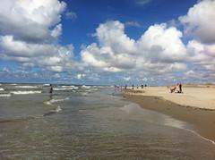 Beach, Texel