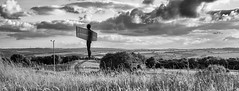 Angel View (munkehmans) Tags: sun grass angel clouds artwork flora view canvas northern northeast tyneside gormley angelofthenorth anthonygormley tyneandwear publicartwork northeastengland andyblakey