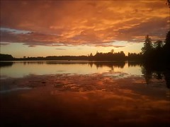 Cranes 2016 (jouko kivel) Tags: cranes sun set kurki auringonlasku joki river autumn syksy