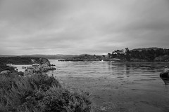 Cloudy day along the coast (randyherring) Tags: ca point water mountains carmelbythesea recreation shore trees cars beach ocean monochrome pointlobosstatenaturalreserve california clouds waves pointlobos park bw blackandwhite cliff rocks unitedstates us