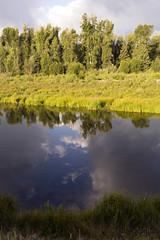 Blue Sky and Clouds reflected (nicoangleys) Tags: tetons grandtetonsnp nationalpark wyoming jacksonhole schwabacherslanding