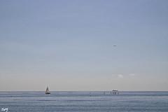 El avin. (svet.llum) Tags: barcelona catalunya catalua mediterrneo mar paisaje barceloneta avin vela verano