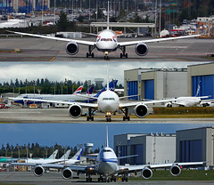 Which one do you prefer? 789, 77W, 748? (wilco737) Tags: kpae pae snohomish county airport boeing paine everett international aviation plane planes airplane airplanes spotting spotter planespotter planespotting boeing787 boeing789 b787 b789 b7879 787 789 7879 boeing777 boeing773 boeing77w boeing777300 boeing777300er b777 b773 b77w b777300 b777300er 777 773 77w 777300 777300er boeing747 boeing748 boeing7478 b747 b748 b7478 747 748 7478 boeing7478i b7478i 7478i intercontinental head face2face british airways saudi air china