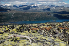 Jotunheimen, Norway (Karol Majewski) Tags: jotunheimen norwa norge norwegia landscape nature krajobraz natura gry mountains fjellet slope stok oppland vg wander wanderlust gjendesheim glittertind maurvangen sjodalen sjodalsvatnet styggeh valley dolina clouds chmury