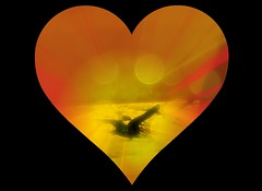 Peace Begins With Love (soniaadammurray - OFF) Tags: digitalphotography manipulated experimental love heart peace free internationaldayofpeace goodwishes together workingtowardsabetterworld