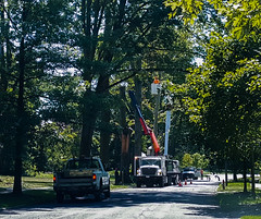 city removes broken trees 01 - Cleveland Heights microburst - 2016-08-29 (Tim Evanson) Tags: clevelandheightsohio clevelandheightsmicroburst weather trees myhouse