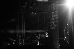_MG_4471 (joetmurphy) Tags: afropunkfest afropunkfest2016 brooklyn commodorepark nyc janellemonae wonderland yoga moonlight electriclady erykah badu jidenna canon rebel