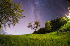 reach up (mh__photo) Tags: canon 6d ff vf full frame fullframe vollformat armin aschbacher mh photo mhphoto beautiful art sky nature christian mountain milk milky milkyway star stars trail galax universe cold deep dark grass stone stones wood manfrotto trippod fisheye sigma 15 mm 28 iso high southtyrol south tyrol italy nord norditaly bolzano bozen tree