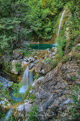 Davelis taking a swim (Dimitil) Tags: iliokhorion landscape greece epirus epire dog adventure hellas people mountain waterfall