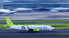 Cleared to land 5 (jcphoto-2013) Tags: airplane 7d2 panning haneda hnd tokyo