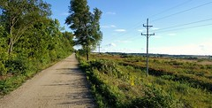 Prarie Trail (mckeenjohn32) Tags: summer trail path outdoor nature landscape vibrant leadinglines countryside