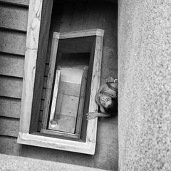 Treppenaufsicht (rippchenmitkraut66) Tags: europe portugal lissabon lisboa street bw blackandwithe monochrome inside new today city olympus sigma em1 19mm