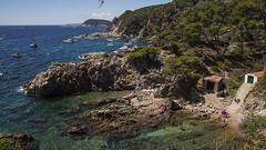 Agosto en la playa v6 - Coves (ponzoosa) Tags: catalunya catalua costa brava cala cove esmeralda emeral mediterraneo seaside mar agua sea
