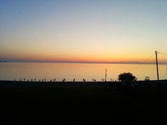 Silence remains (Rob Hall -) Tags: sunset sun dusk sea seaside seafront seashore beach trees color colors colour colours beauty beautiful serenity serene idyllic