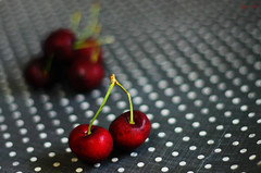 164 | 366 (EsotericMaiden) Tags: red summer white canon cherry 50mm grey cherries bokeh fresh polkadots stems 365 dots freshfruit day164 summerfruit 366 365project 366project 164366 june2012 greywhitepolkadots