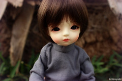 Eiri is back  (Arisuyuki) Tags: doll makeup bjd dollfie eiri faceup dollmore yosd babylamb eirien babylambmiadoll miasbabydollaga dollmoreaga arisuyuki
