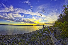 Happy (Vapor) Trails to You (Kansas Poetry (Patrick)) Tags: sunset tree fav lawrencekansas clintonlake patrickemerson patricklovesnancy4ever
