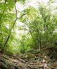 Adventure Wife (mightyboybrian) Tags: panorama heidi virginia anniversary trail riverbed wife potomac 50mmf12 9images brenizermethod 5dmarkiii