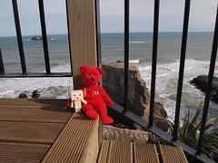 Rest Stop (Felyne on Flickr) Tags: pierre danbo danboy pierreredbear