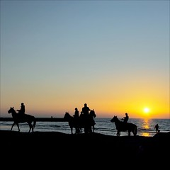 Only The Horses (s@brina) Tags: sunset sea horses reflection beach evening atmosphere explore