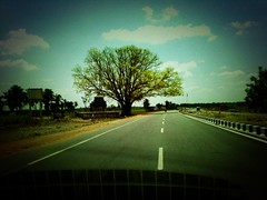Tree on the state highway near Ulundurpet, Tamil Nadu, India (Snap_me_more) Tags: india tree temple highway district salem watertank tamilnadu lonetree lonelytree iphone treeshade villupuram attur ulundurpet nh79 roadsinindia highwaysinindia instagram villupuramdistrict highwayinindia roadsintamilnadu